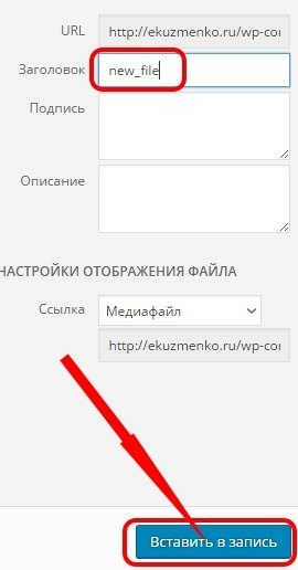 Вставить файл в запись