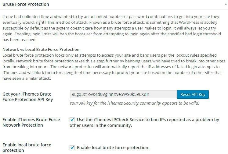 Настройки безопасности iThemes Security - Brute Force Protection