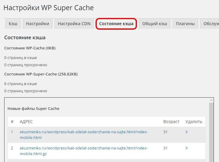 Статус кеша в плагине WP Super Cache